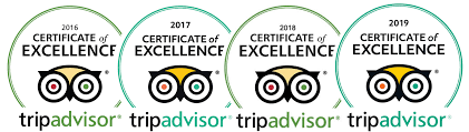 Certificate of Excellent 2016,2017,2018,2019, 2020